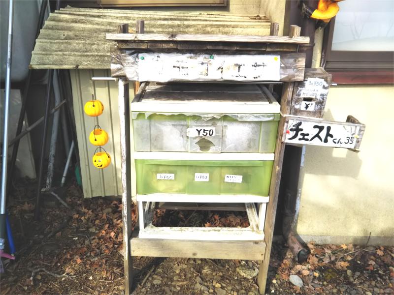 盛岡高松の池白鳥カモコイの餌置き場50円