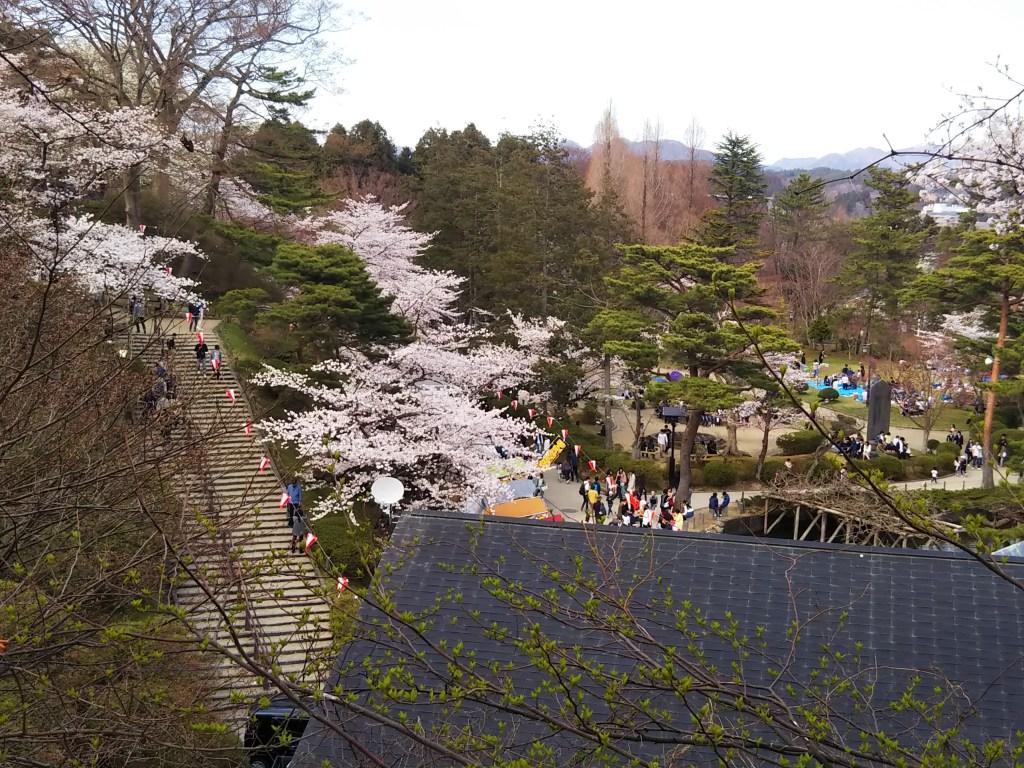 秋田市千秋公園桜まつり