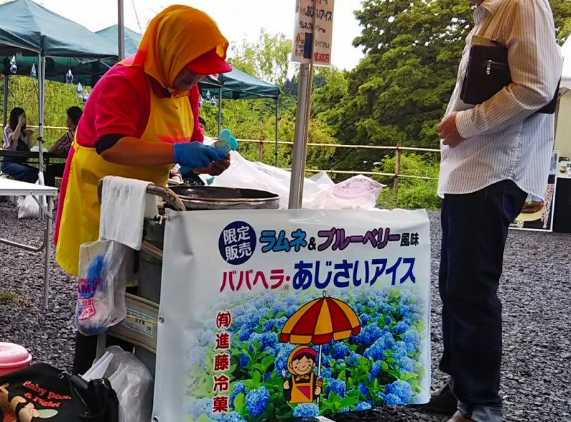 男鹿の雲昌寺あじさい2019