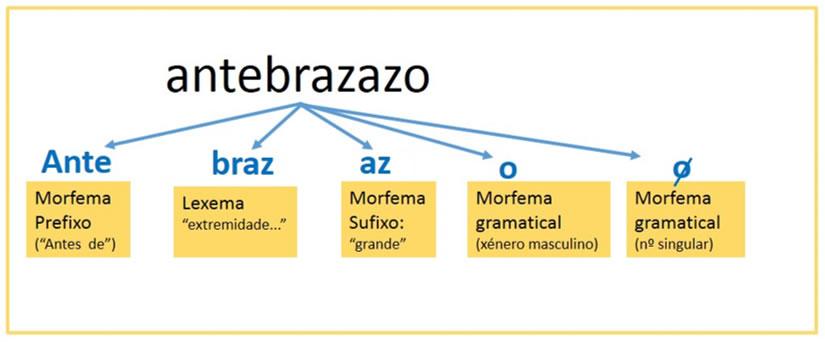 Resultado de imaxes para os morfemas galego