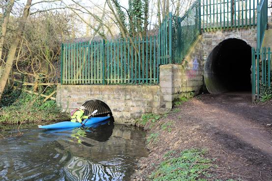 bizarre....  - Page 36 Kayak-Commuter-2-554