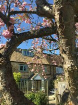 cotswold-village-rooms-cosy-corner-cottage-exterior-garden