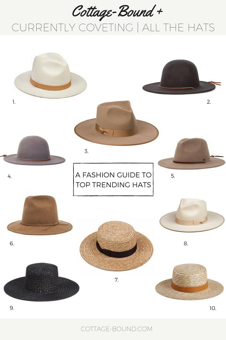 wide brim hats, straw hats, wool/felt hats