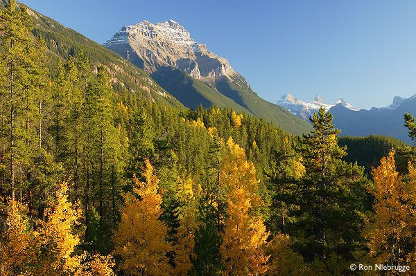 Fall Cottage Wallpaper 12 Beautiful Photos Of Canadian National Parks In Autumn