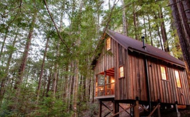 Add This Cabin Deep In A Redwood Forest To Your Must Visit