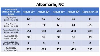 Effective bloom dates for Albemarle