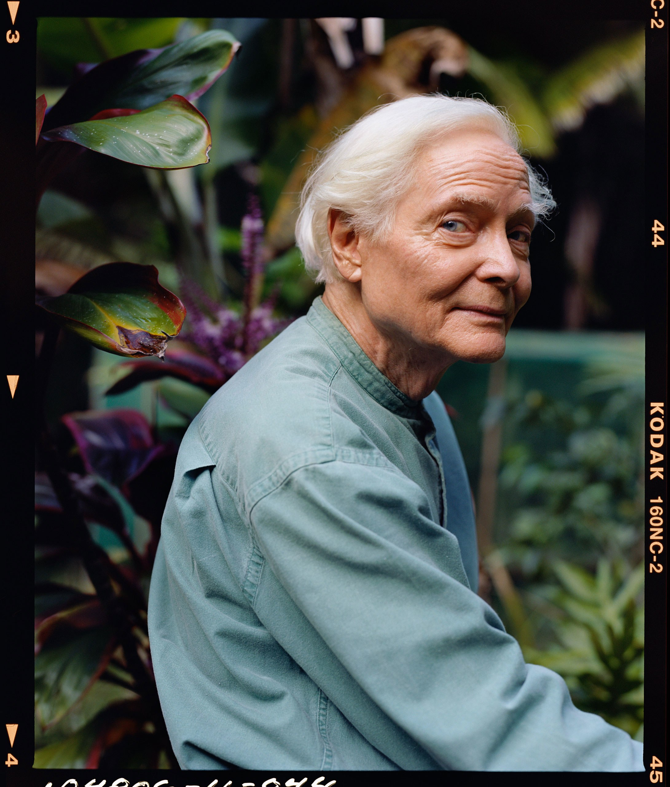 W.S. MERWIN DISCOVERED