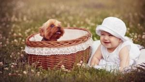 bébé avec un chiot