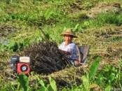 Lady at Maing Thauk Myanmar