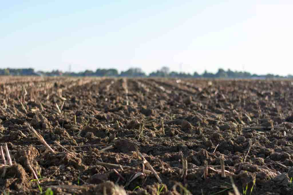 farmland with a fresh layer of healthy soil or compost added on top