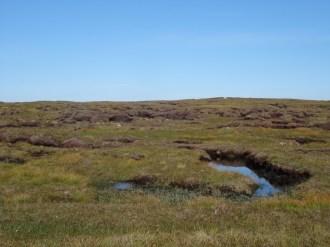 Beautiful bogs and peat hags