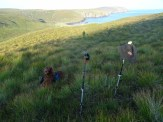 Very poorly exposed, but a good shot of dog, poles, hat and breakfast!
