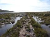 Ahhhh, finally! A path!! (next to Loch Mòr a' Chraisg.