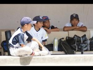 少年野球ベンチ