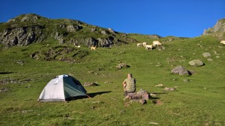 Our home for the night - with the cows