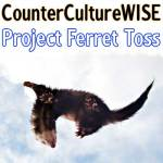 Project Ferret Toss