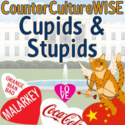 Cupids and Stupids