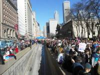 The Chicago Women's March was so large that no one photograph or photographer could have covered the vastness of it (estimated by TV news at a quarter million people, and possibly much more). Above, part of the crowd on Michigan Ave. looking north from the Art Institute (to the right in the photo). Substance photo by Susan Zupan.