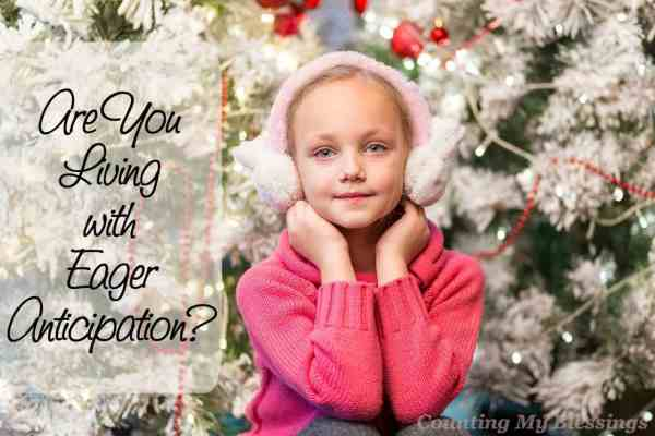 Do you remember waiting for Christmas as a child Eager anticipation... what does that look like now that you're the one preparing for Christmas