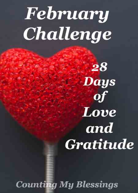 If you died tomorrow would the people in your life know you loved them. You can change that. Will you take the challenge? - 28 Days of Love and Gratitude -