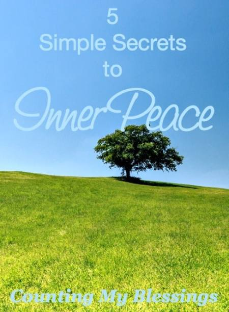 To Celebrate Pandemonium Day stop for a minute and take a look at the simple secrets to inner peace. Trading chaos for peace . . . sounds wonderful.