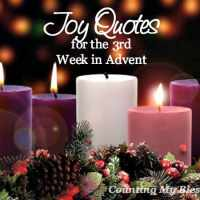 Joy Quotes for the Third Week of Advent