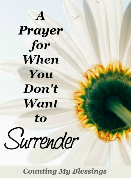 If you're like me . . . you want your own way and you want it now. Here is my prayer to surrender control.