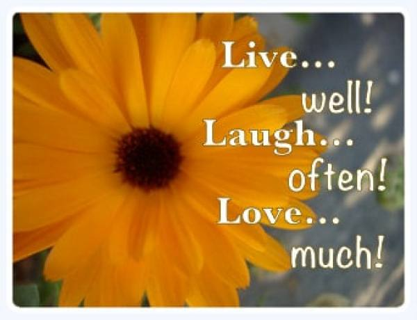 Seriously, wouldn't you just love to have more fun? Now's the time to live, laugh, and love. There will never be a better day than today.