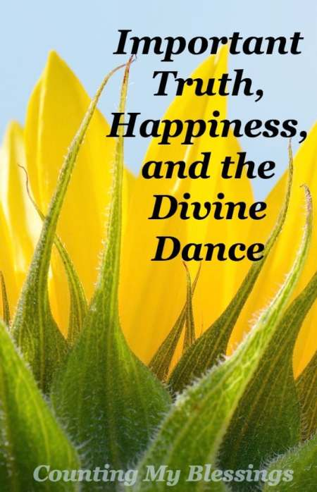 We believe all kinds of untruths just because we've believed them for so long. But there is a better way . . . a way to enjoy life through the divine dance.