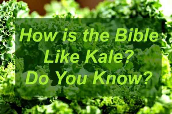 How is the Bible Like Kale? I bet no one has ever asked you that before. Read this to find out some interesting ways they're similar...