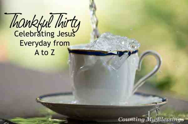 There are too many blessings to simply celebrate Thanksgiving one day a year. Join me for Thankful Thirty to celebrate Jesus everyday from A to Z.