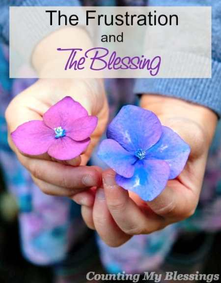 The Frustration and The Blessing – Counting My Blessings