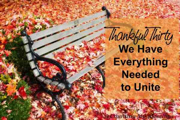 Jesus prayed for it. The apostles stressed it. Yet countless things work to divide us. Did you know we have everything we need to unite