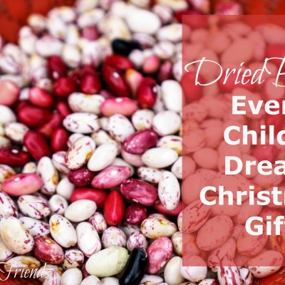 Dried beans or rice may not be your children's dream gift, but you can make a lasting impression on them by beginning with this little lesson