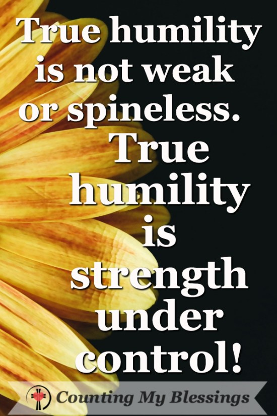 10 Important Things You Need to be Humble by Deb Wolf @ Counting My Blessings