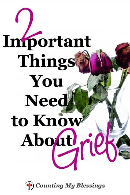 """Grief is such a weird, uncontrollable beast. You never know when or where or how it's going to pop up and demand its due."""