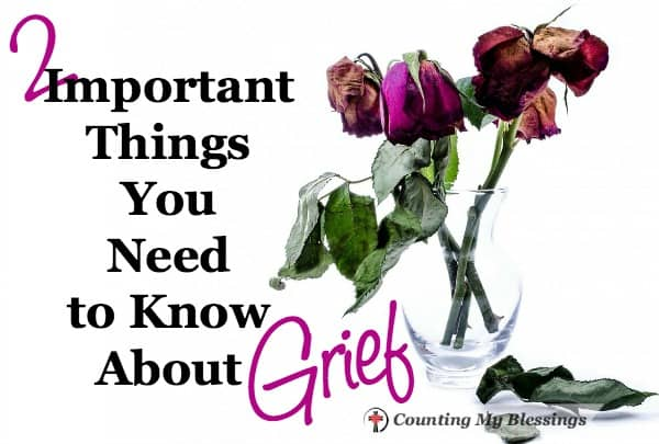 """""""Grief is such a weird, uncontrollable beast. You never know when or where or how it's going to pop up and demand its due."""""""