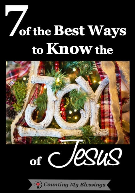 The joy of Jesus is a feeling that goes deep into the heart and soul dwelling in the presence of God Himself. Joy is who we are because of who Jesus is.
