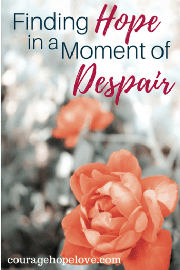 Finding Hope in a Moment of Despair - Nicole Kauffman