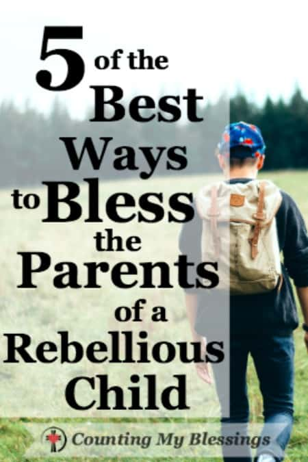 It's easy to be a perfect parent when you don't have any children. Before you criticize and judge parents of a rebellious child read this...