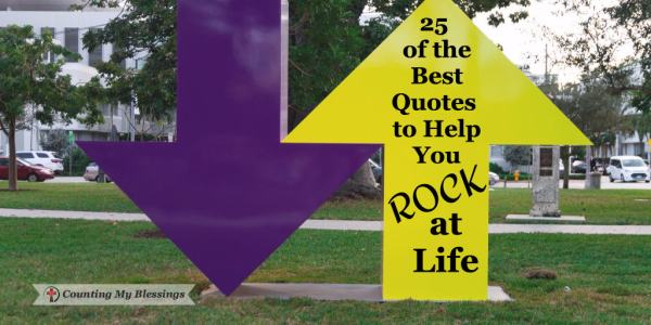 25 of the Best Quotes to Help You Rock at Life - Counting My Blessings by Deb Wolf