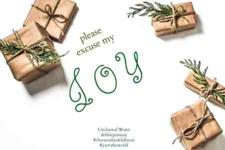 Please Excuse My Christmas Joy in November by Debbie Putnam