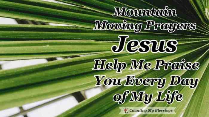 Mountain Moving Prayers - Jesus Help Me Praise You Every Day of My Life - It's easy to praise Jesus when life is good but my prayer is to praise Him every day, even when life is hard and I have to stand alone. #Prayer #Faith #BibleStudy #CountingMyBlessings