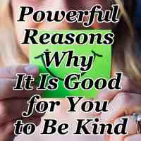 Powerful Reasons Why It Is Good for You to Be Kind