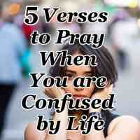 5 Verses to Pray When You are Confused by Life