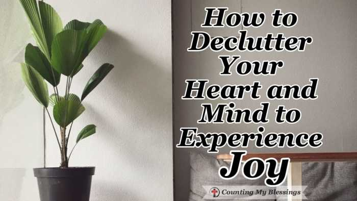 When you declutter your heart and mind it's possible to improve your joy level the same way a tidy home is able to bring a sense of calm and happiness. #Declutter #FindYourJoy #MentalHealth #Peace