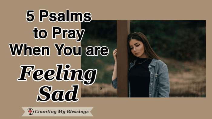 Psalms and prayers to help you take your burdens to God when you are feeling sad. It's a blessing that He wants us to honestly take everything to Him in prayer. #EmotionalHealth #Sadness #Prayer #Psalms #WWGGG #CountingMyBlessings
