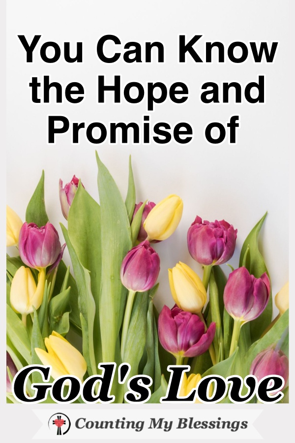 The promise of God's love - His undeserved patient love and forgiveness flattens me. I'd love to tell you how I believe you can experience this blessing too. #God'sLove #Faith #Patience #Hope #Forgiveness #BibleStudy #WWGGG #CountingMyBlessings #HisGraceGirls