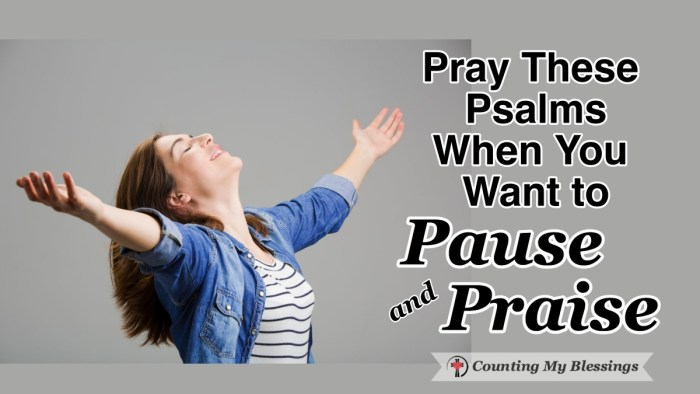 It's so easy to get distracted by life that we can forget to pause and praise God as often as we'd like. Here are Psalms to help you pause, pray, and praise. #WWGGG #CountingMyBlessings #PraiseGod #Prayers