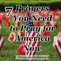 7 Verses You Need to Pray for America Now